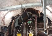 transport koni do kopalni