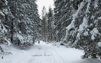 Tatry Zachodnie, Dolina Kościeliska zimą